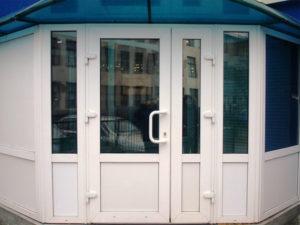 входные пвх двери белые